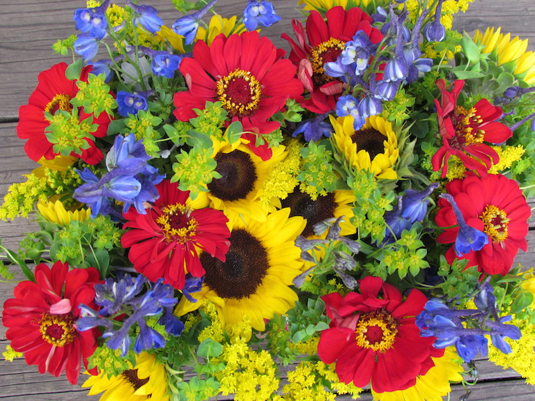 Sunflowers, delphinium and zinnias