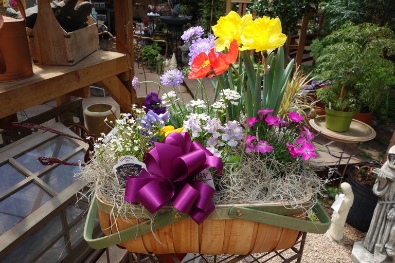 Early Spring Blooming Basket