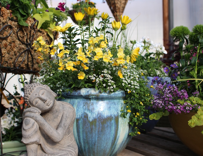 French Garden with colorful annuals in a blue pot