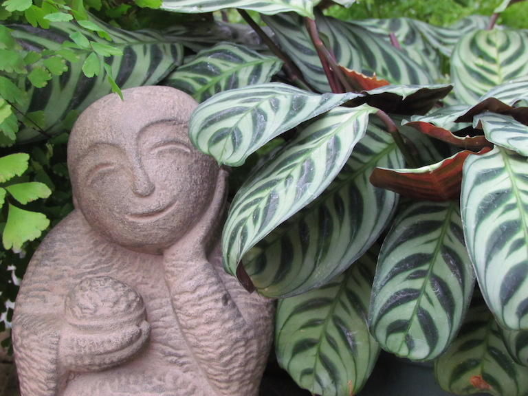Jizo Statue with a Prayer Plant