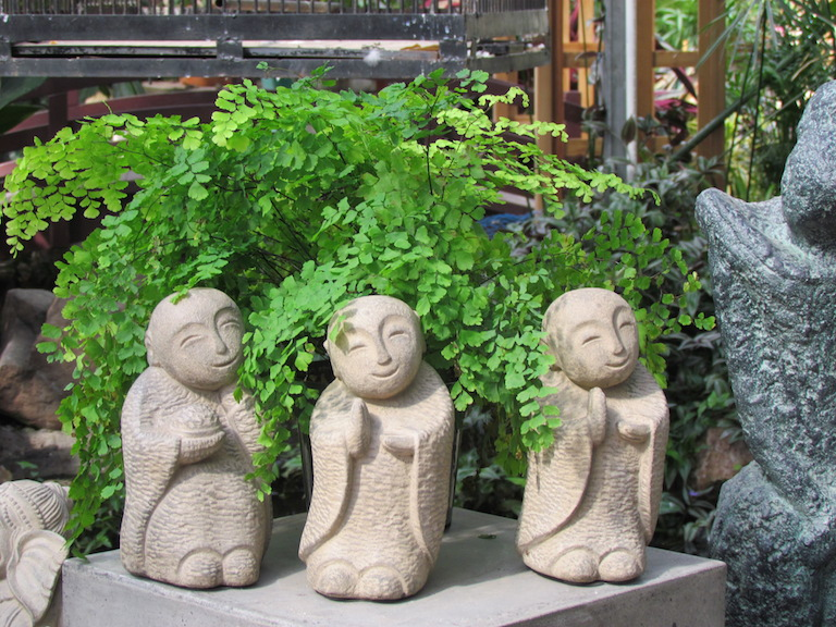 Wonderful Jizo Statue In Fern Garden