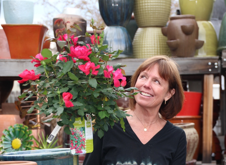 Jill with a carefree Knock Out red rose