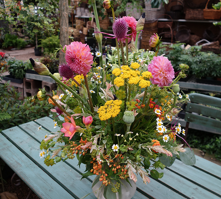 Dahlias, Yarrow and Poppy Pods