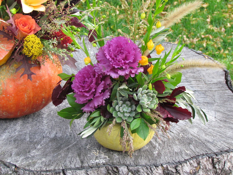 White pumpkin with purple kale and succulents