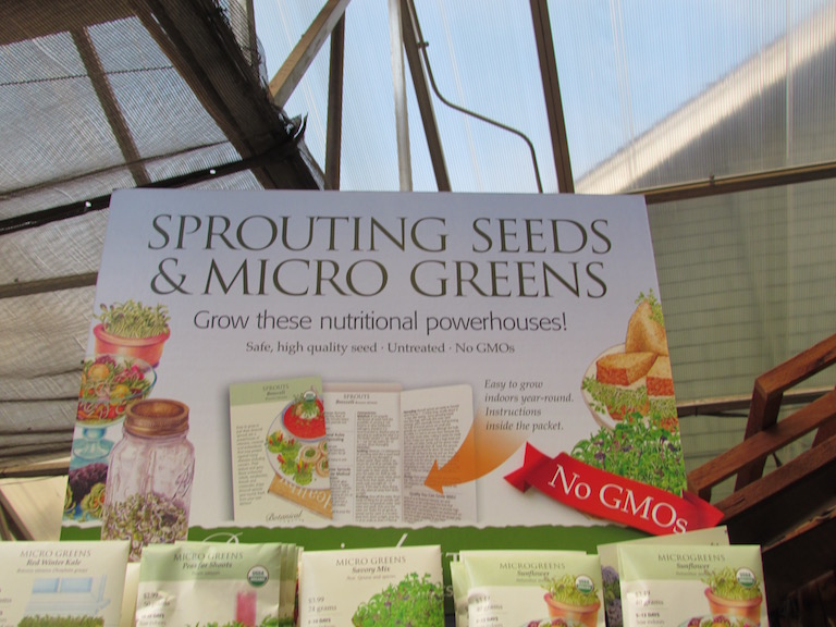 Sprouting Seeds and Micro Greens