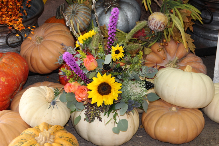 Sunflowers and liatris in a white heirloom pumpkin