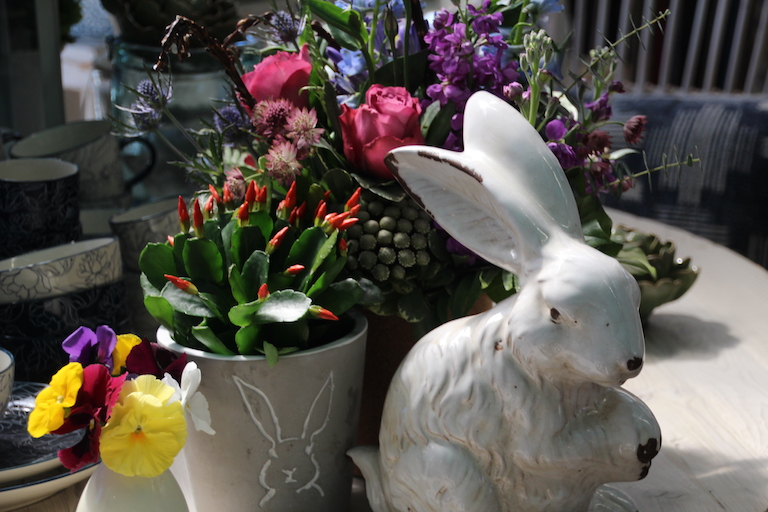 Easter bunnies and rhipsalidopsis spring cactus