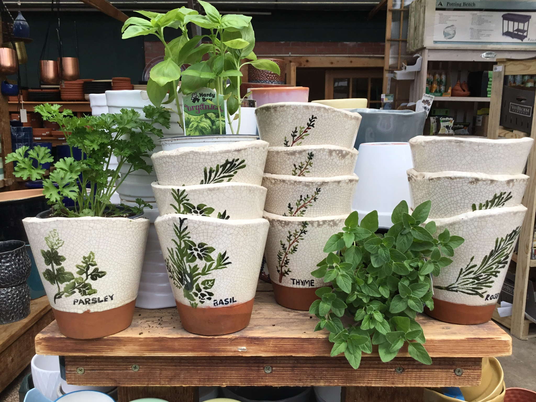 Herb pots for the kitchen gardener