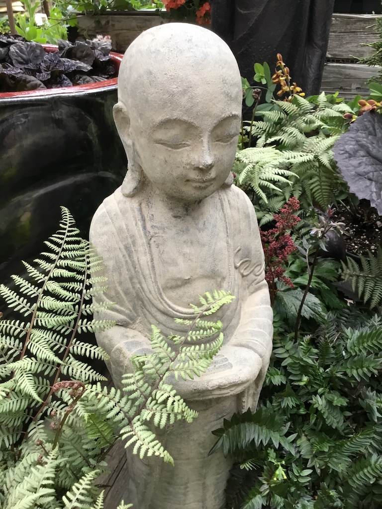 Buddha with ferns