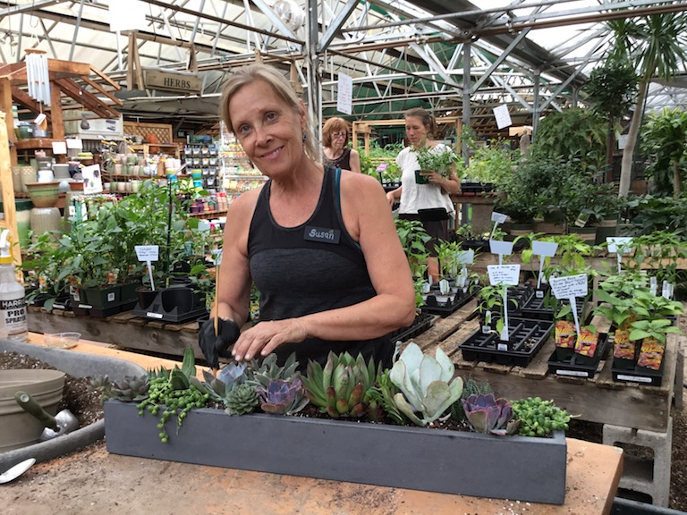 Susan planting succulents for a customer