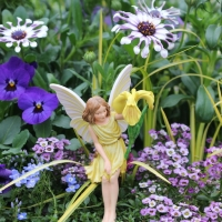 Fairy Garden Class Tuesday, March 27th at 10:30!