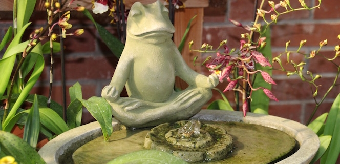 Frog fountain in Boulder CO